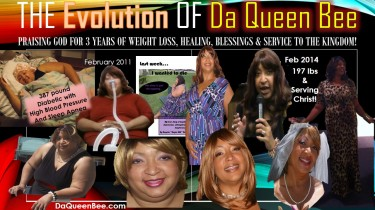 The Evolution of Da Queen Bee  book cover