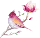 watercolour-magnolia-13