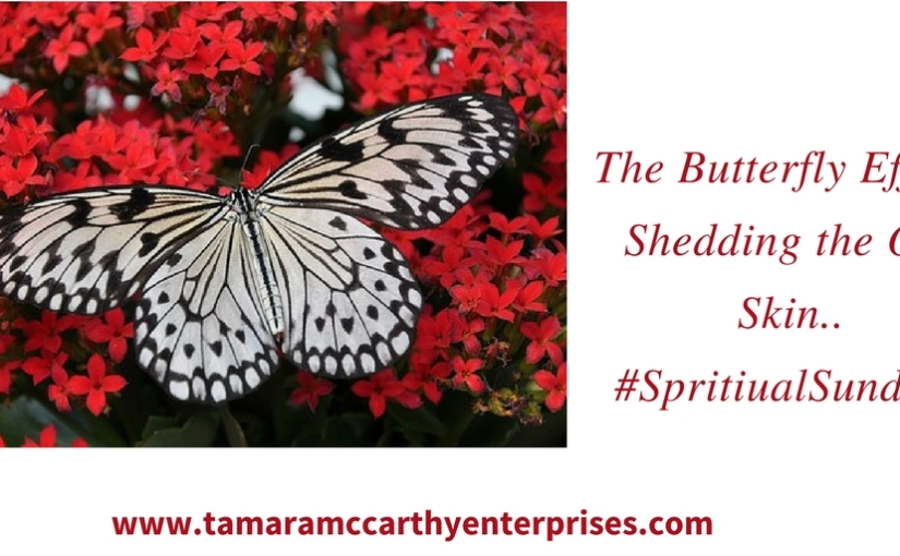 The Butterfly Effect: Shedding The Old Skin…#SpiritualSundays